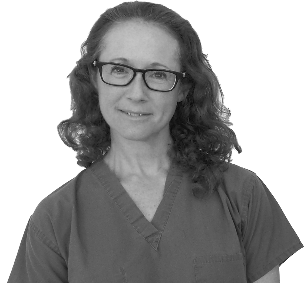 stephanie cohen md